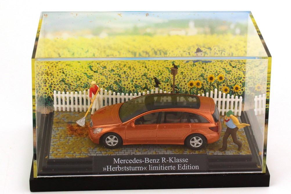 """Busch MB R-Klasse (W251) kupfer-rot-met. in Minidiorama """"Herbststurm""""  in Minivitrine -Einzelstück-"""