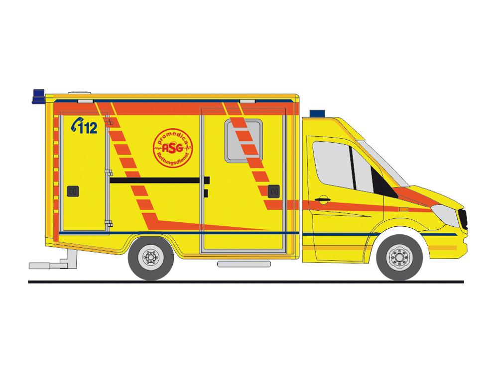 Rietze MB Sprinter 13 RTW Promedica ASG Ambulanz Leipzig, NH 01-02/19